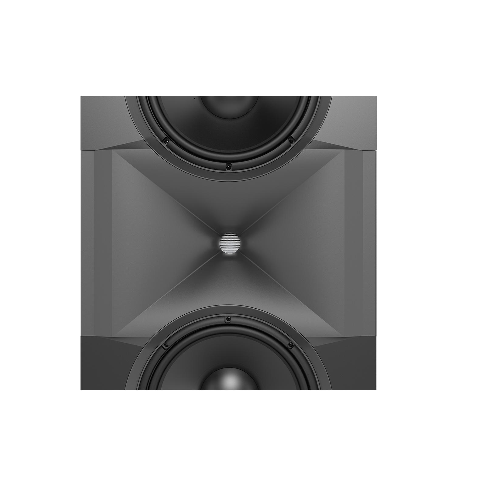 SCL-1 - Black - 2-Way Dual 12-inch (300mm) Custom LCR Loudspeaker - Detailshot 9